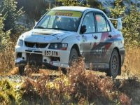 Michael Williams & Steve Perry Grizedale Stages 2016 (Pic by Cath Hutchinson)
